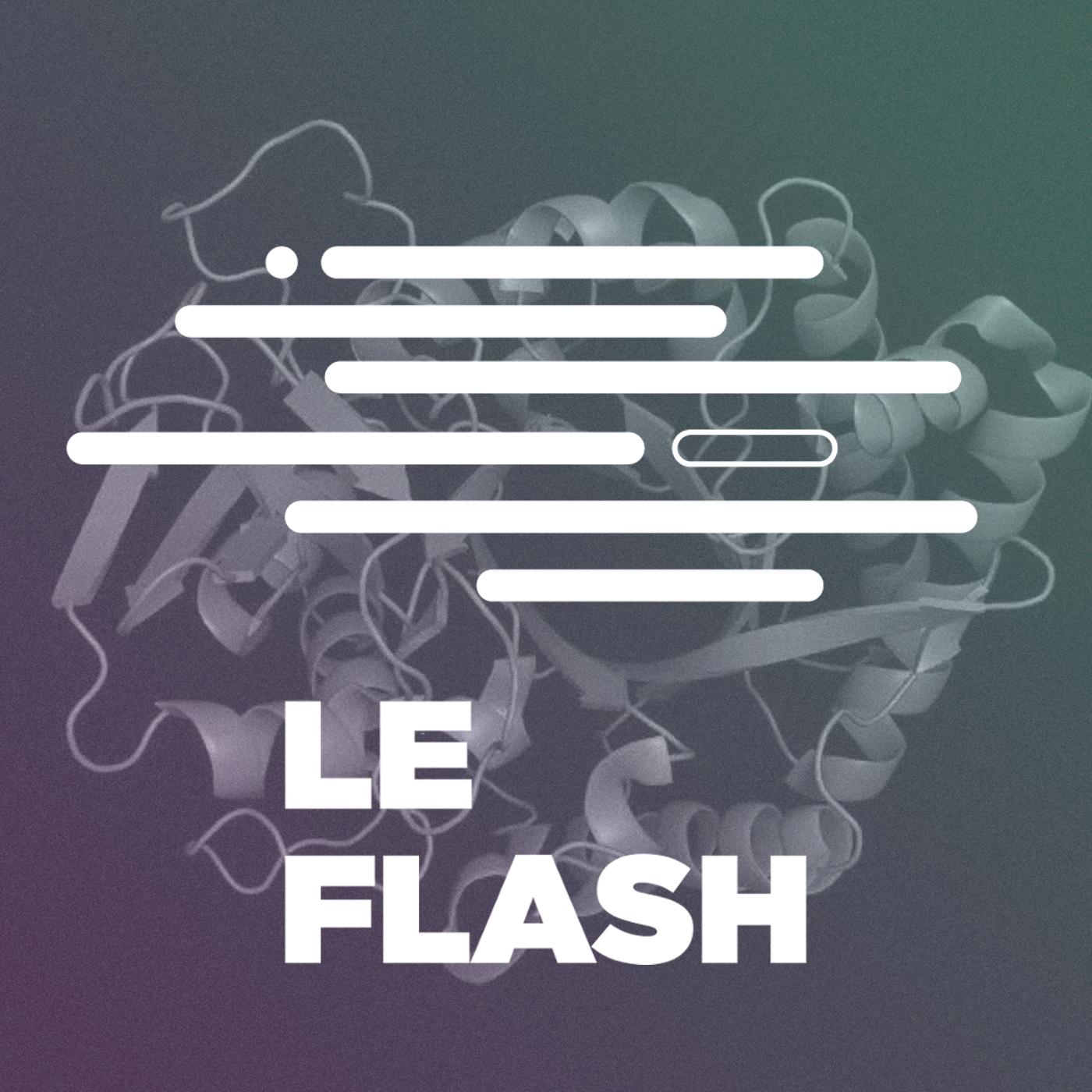 Flash - Deepmind EXPLOSE un concours d'IA