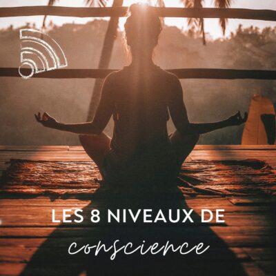 Les 8 niveaux de conscience